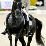Counting the cost of equestrian sport