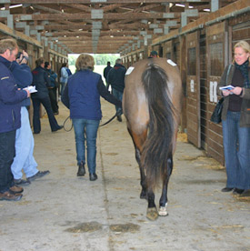 Should AI be accepted in thoroughbreds, the shape of the industry is bound to change radically.