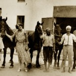 Dorothy Brooke in the yard of the SPCA in Cairo with some of the war horses she rescued in the 1930s. © The Brooke