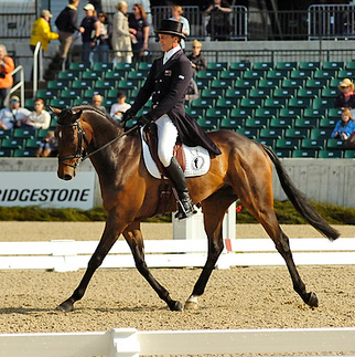 Andrew Nicholson (NZ) and Calico Joe are in third place.