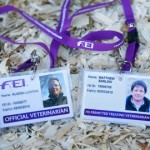 Lead vet sought for 2016 Rio Olympics
