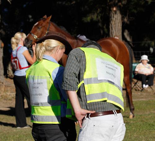 NZ-endurance-champs8612