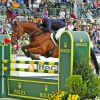 Kiwis among favourites at Germany's Luhmühlen Horse Trials