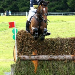Longines named title sponsor Blair's European Eventing Champs