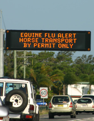Australia's equine influenza outbreak was in 2007.