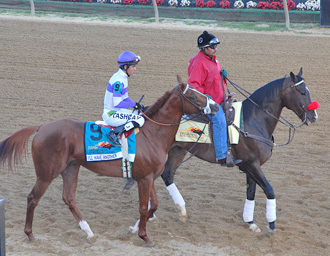 Preakness winner I'll Have Another with multimillion dollar winning lead horse Lava Man before the Preakness Stakes.