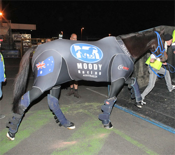 Black Caviar boards the plane at Tullamarine Airport in Melbourne yesterday at the start of her long journey to the UK