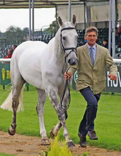 Avebury and Andrew Nicholson