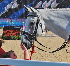 London 2012's Paralympic equestrian competition starts on Thursday.
