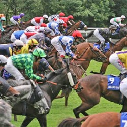 Vet board works to retain racing funding