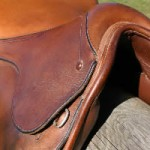 New scheme to help combat saddle problems