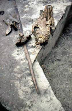 One of the perfectly-preserved spears.