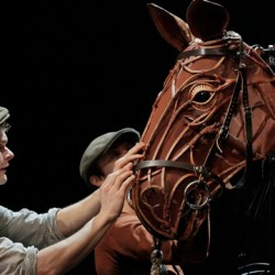War Horse a seemingly unstoppable force