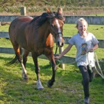 Sport England gives 6 GB equestrian centres £200,000