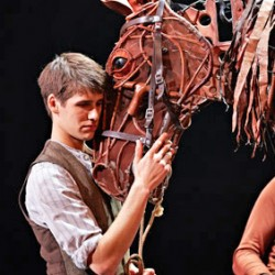 """War Horse"" Auckland season cancelled"