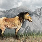An artist's impression of the Yukon Horse, dating back 26,000 years.