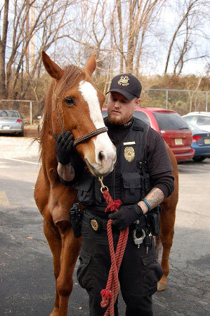 Pennsylvania SPCA officer Rich with one of the horses.