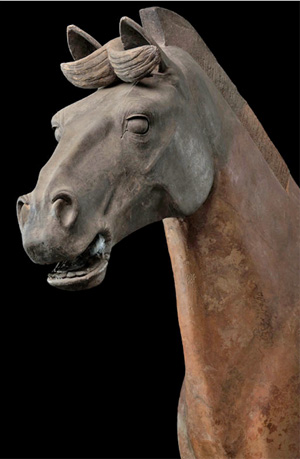 Chariot Horse from the Qin Dynasty, Xi'An, 3rd Century BC.