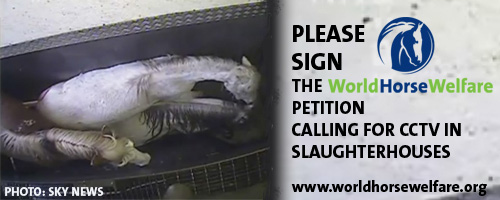 slaughter-petition