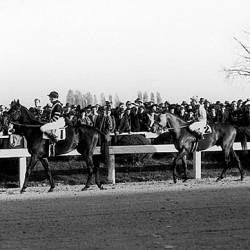 War Admiral and Seabiscuit, November 1, 1938.