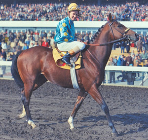 Northern Dancer.