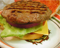 burger-test