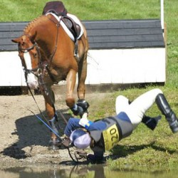 Horses only one part of equation in accidents, say researchers