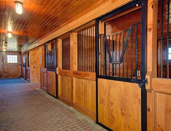 Mulitmillion Dollar Horse Estate To Be Auctioned