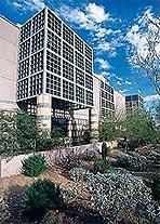 The Mayo Clinic in Scottsdale, Arizona.