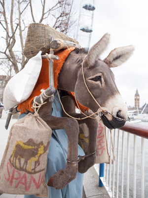 donkey-costume-spana2