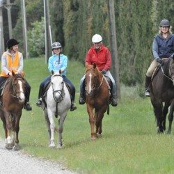 Horse riding: we're not just sitting there