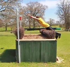 free-jump-badminton