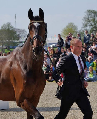 Michael Jung and Leopin.