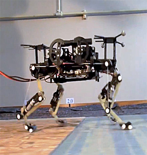 "The robot, named ""cheetah cub""."