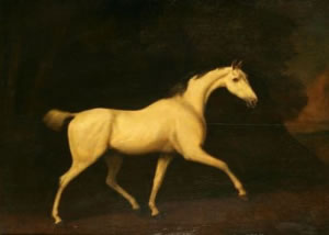 """A grey horse, apparently belonging to Lord Westmorland"", signed George Stubbs. (1786)"
