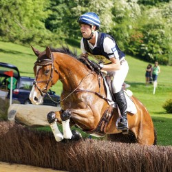 Leg fracture claims life of eventer Easy Tiger IV