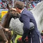 Do horses prefer a friendly pat or a scratch?