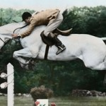 New movie to feature showjumping's Cinderella horse Snowman