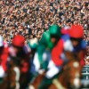 British racing body details new zero-tolerance policy over anabolic steroids