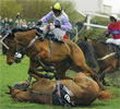Racecourse protest follows three horse deaths