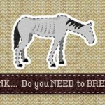 World Horse Welfare's latest campaign was sparked by survey results showing the considerable impact on horse numbers from small-scale breeders.