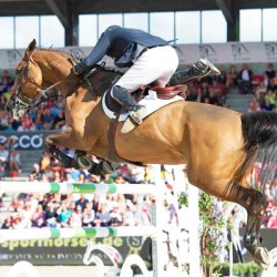 Preview: European Jumping Championships in Aachen