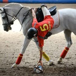 Horseball latest equestrian sport to join FEI family