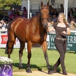Sad loss of leading British eventing horse De Novo News