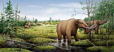 An artist's rendition of mastodons, camels and a ground sloth before the environmental changes of the Younger Dryas led to their extinction. Image: Barry Roal Carlsen, University of Wisconsin