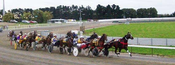 Harness racing in the Manawatu region of New Zealand. Photo: Charlotte Bolwell