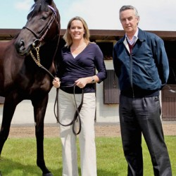 New, more accurate thoroughbred genetic test announced
