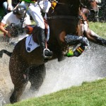 High eventing horse injury toll revealed in study