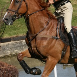 "Could eventing be rebranded as the ""equestrian triathlon""?"