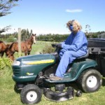 Lawn clippings dangerous fare for horses